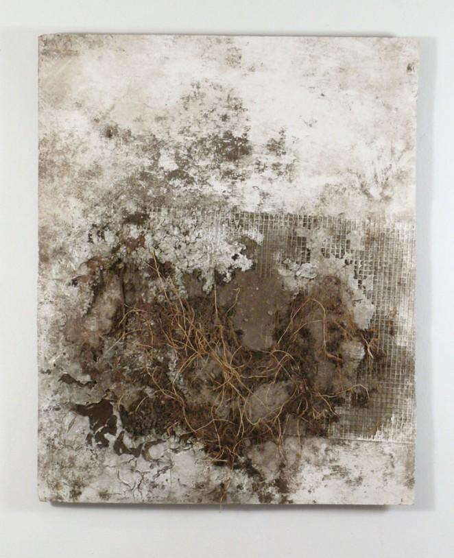 Concrete Roots