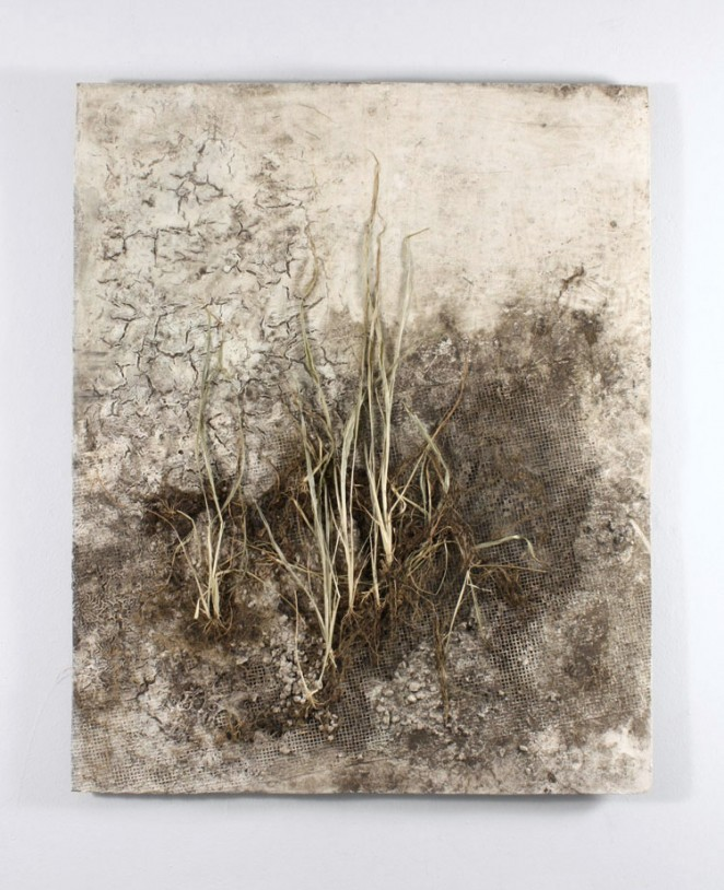 "Corn Drought Corn Plant, Concrete, Dirt, Acrylic Paint, Metal Mesh on Wood Panel. 36"" x 48"" The surface was constructed then buried in the soil to allow corn to grow from a seed."